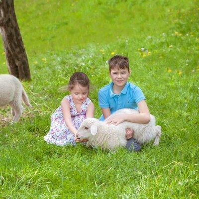 Bauernhofurlaub im Odenwald