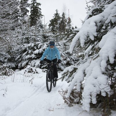 Mountainbiking Odenwald Winter